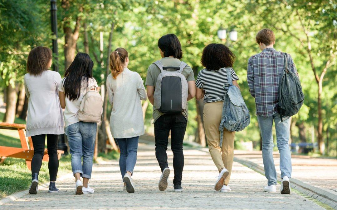 Westsächsische Hochschule Zwickau: Zahlreiche Aufbaustudiengänge starten zum Sommersemester